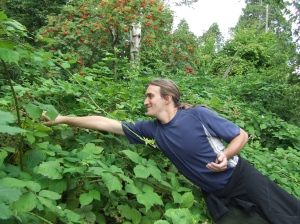 Wandering Justin picks wild blackberries